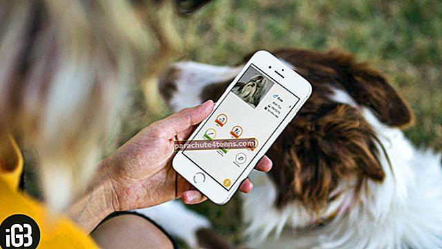 """Geriausios """"iPhone"""" ir """"iPad"""" naminių gyvūnėlių priežiūros programos 2021 m"""
